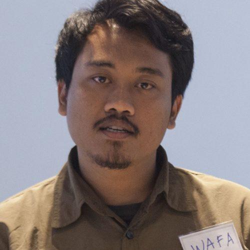 Muhammad Ali Wafa